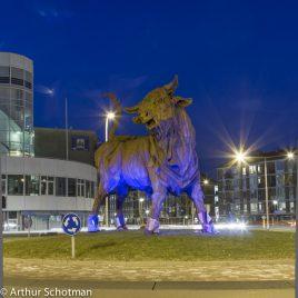 De Stier van Amersfoort by night