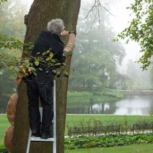 Beelden van Bomen door Arthur Schotman Fotografie